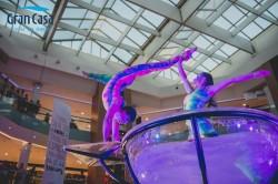 contratacion-de-espectaculo-waterbowl-para-un-evento-muy-especial-junto-a-dos-acrobatas-en-el-interior-de-una-gran-copa-de-agua